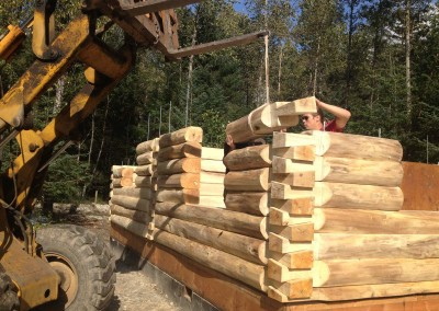 119-Mary Jane log placement