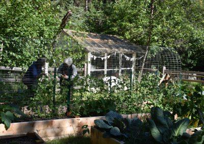 Dorothy-Rachel garden